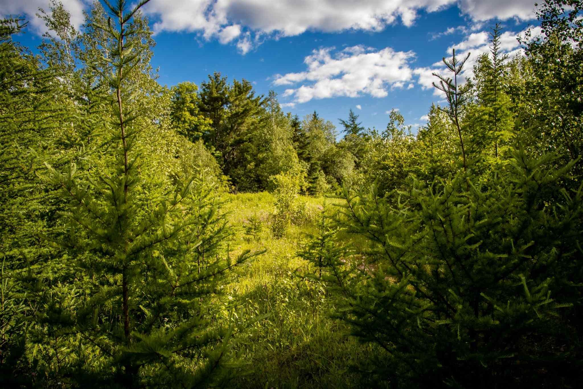 Main Photo: Lot A5 Aylesford Road in Lake Paul: 404-Kings County Vacant Land for sale (Annapolis Valley)  : MLS®# 202115393