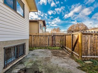 Photo 41: 20 Rivervalley Drive SE in Calgary: Riverbend Detached for sale : MLS®# A1047366