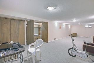 Photo 30: 3708 108 Street in Edmonton: Zone 16 House for sale : MLS®# E4255030