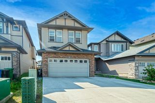 Photo 33: 31 SKYVIEW SHORES Link in Calgary: Skyview Ranch Detached for sale : MLS®# A1130937