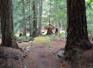 Photo 46: 320 Huck Rd in : Isl Cortes Island House for sale (Islands)  : MLS®# 863187
