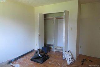 Photo 7: 1849 Carnarvon St in VICTORIA: SE Camosun House for sale (Saanich East)  : MLS®# 789064