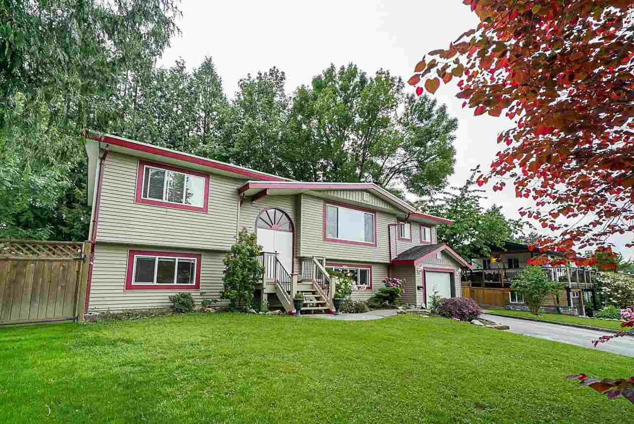 Main Photo: 22738 124 Avenue in Maple Ridge: East Central House for sale : MLS®# R2373471