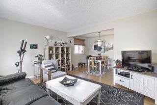 Photo 3: 56 Langton Drive SW in Calgary: North Glenmore Park Detached for sale : MLS®# A1081940
