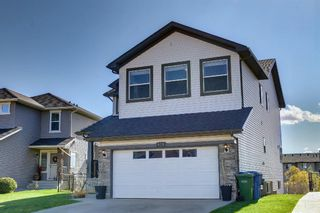 Photo 47: 176 WILLOWMERE Way: Chestermere Detached for sale : MLS®# A1153271