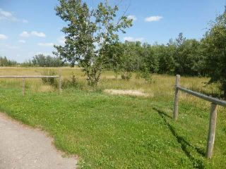 Photo 15: 40 26555  Twp 481: Rural Leduc County Rural Land/Vacant Lot for sale : MLS®# E4258053