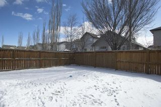 Photo 36: 33 Brightondale Park SE in Calgary: New Brighton Detached for sale : MLS®# A1088765