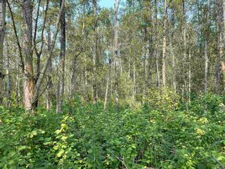 Photo 8: RGE RD 223 Twp Rd 594: Rural Thorhild County Rural Land/Vacant Lot for sale : MLS®# E4256609