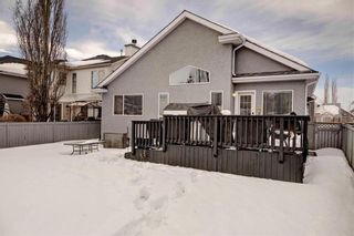 Photo 34: 246 CHAPARRAL Place SE in Calgary: Chaparral House for sale : MLS®# C4172141