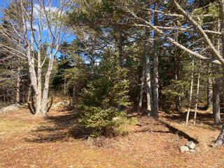 Photo 20: 1785 East Jeddore Road in East Jeddore: 35-Halifax County East Residential for sale (Halifax-Dartmouth)  : MLS®# 202104256