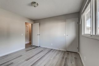 Photo 16: 236 QUEEN CHARLOTTE Way SE in Calgary: Queensland Detached for sale : MLS®# A1025137