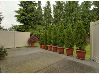 """Photo 15: # 80 5550 LANGLEY BYPASS RD in Langley: Langley City Townhouse for sale in """"Riverwynde"""" : MLS®# F1314556"""