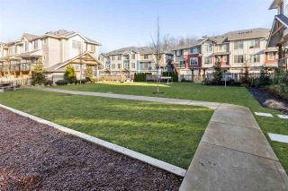 """Photo 28: 88 20498 82 Avenue in Langley: Willoughby Heights Townhouse for sale in """"GABRIOLA PARK"""" : MLS®# R2530220"""