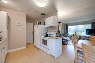 Photo 7: 7944 76 Avenue in Edmonton: Zone 17 House for sale : MLS®# E4264457