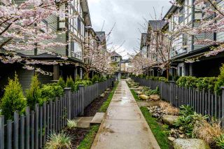 "Photo 36: 38 8138 204 Street in Langley: Willoughby Heights Townhouse for sale in ""ASHBURY & OAK"" : MLS®# R2560936"