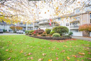 "Photo 1: 311 22514 116 Avenue in Maple Ridge: East Central Condo for sale in ""FRASER COURT"" : MLS®# R2322303"