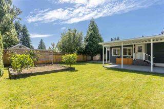 "Photo 29: 11672 STEEVES Street in Maple Ridge: Southwest Maple Ridge House for sale in ""SOUTHWEST MAPLE RIDGE - RIVER ROAD AREA"" : MLS®# R2471470"
