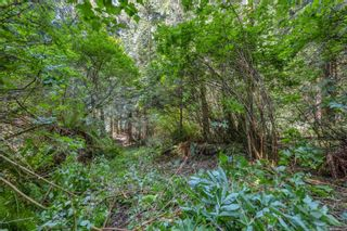 Photo 35: LOT 9 West Coast Rd in : Sk West Coast Rd Land for sale (Sooke)  : MLS®# 876669