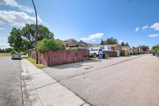 Photo 43: 51 Erin Park Close SE in Calgary: Erin Woods Detached for sale : MLS®# A1138830