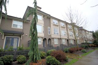 """Photo 1: 37 7938 209 Street in Langley: Willoughby Heights Townhouse for sale in """"Red Maple Park"""" : MLS®# R2338370"""