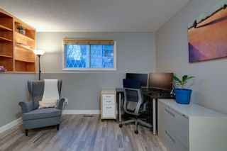 Photo 29: 164 Berwick Drive NW in Calgary: Beddington Heights Detached for sale : MLS®# A1095505