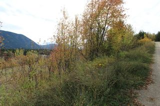 Photo 5: 36 2481 Squilax Anglemont Road in Lee Creek: North Shuswap Land Only for sale (Shuswap)  : MLS®# 10072100