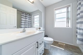 Photo 32: 12 Royal Road NW in Calgary: Royal Oak Detached for sale : MLS®# A1147098