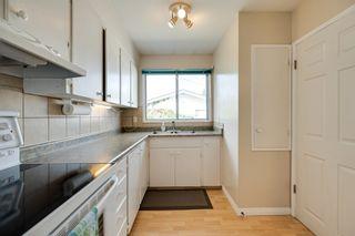Photo 15: 5208 90 Avenue in Edmonton: Zone 18 House for sale : MLS®# E4247858