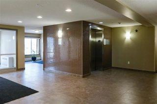 Photo 3: 302 4407 23 Street NW in Edmonton: Zone 30 Condo for sale : MLS®# E4240859