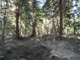 Photo 13: 1239/1241 VANCOUVER BLVD in Savary Island: Vacant Land for sale : MLS®# 16136