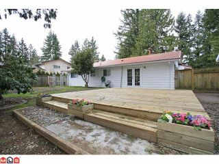 """Photo 10: 4370 204TH Street in Langley: Brookswood Langley House for sale in """"Brookswood"""" : MLS®# F1206281"""