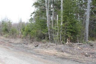 Photo 7: Lot 4 Miller Road in Devon: 30-Waverley, Fall River, Oakfield Vacant Land for sale (Halifax-Dartmouth)  : MLS®# 202007244