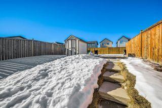 Photo 24: 215 Silverado Plains Close SW in Calgary: Silverado Detached for sale : MLS®# A1062465