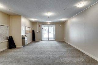 Photo 3: 4319 403 Mackenzie Way SW: Airdrie Apartment for sale : MLS®# A1067372