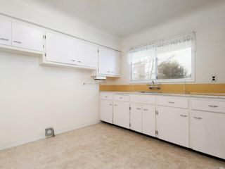 Photo 12: 3054 Donald St in : SW Gorge House for sale (Saanich West)  : MLS®# 864115