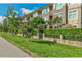 """Photo 4: 114 18818 68 Avenue in Surrey: Clayton Condo for sale in """"Celara"""" (Cloverdale)  : MLS®# R2586217"""