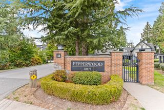 """Photo 1: 71 20875 80 Avenue in Langley: Willoughby Heights Townhouse for sale in """"Pepperwood"""" : MLS®# R2617536"""