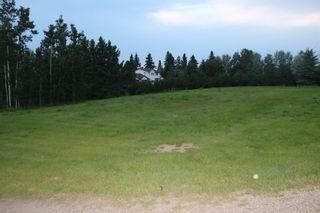 Photo 1: 5 Avenue Princess Street: Elnora Land for sale : MLS®# A1022937