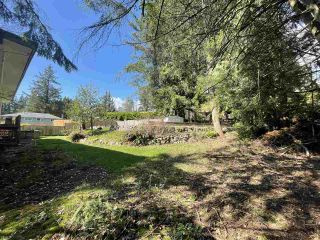 Photo 25: 950 PLYMOUTH Place in North Vancouver: Windsor Park NV House for sale : MLS®# R2571036