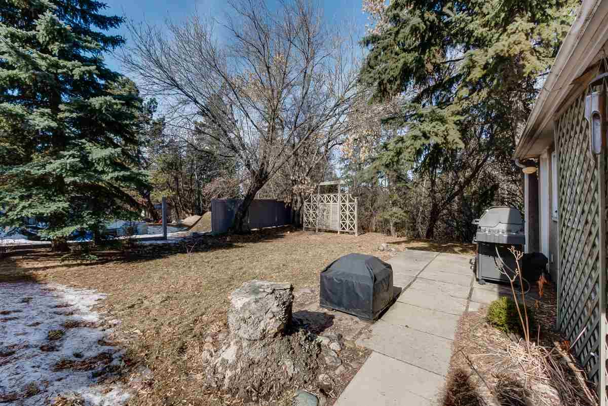 Photo 38: Photos: 7012 103 Avenue in Edmonton: Zone 19 House for sale : MLS®# E4234116