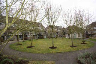 """Photo 16: 210 9333 ALBERTA Road in Richmond: McLennan North Condo for sale in """"Trellaine"""" : MLS®# R2143818"""