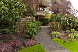 Photo 7: 306-2366 Wall Street in Vancouver: Hastings Condo for sale (Vancouver East)  : MLS®# V812087