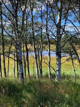 Photo 25: 10 176142 Hwy 549 W: Rural Foothills County Land for sale : MLS®# A1117268