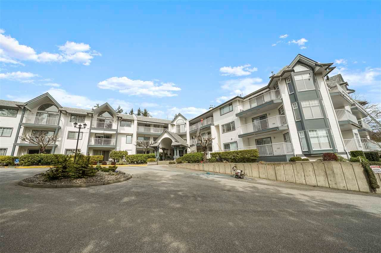 "Main Photo: 211 11601 227 Street in Maple Ridge: East Central Condo for sale in ""Castle Mount"" : MLS®# R2563383"