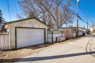 Photo 48: 116 Bowers Street NE: Airdrie Detached for sale : MLS®# A1095413