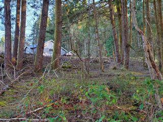 Photo 13: 3532 Parkview Cres in : PA Port Alberni Land for sale (Port Alberni)  : MLS®# 858454