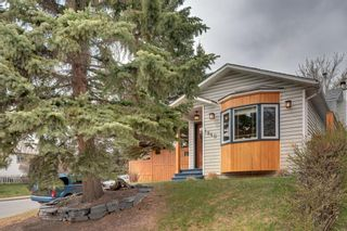 Photo 39: 1840 33 Avenue SW in Calgary: South Calgary Detached for sale : MLS®# A1100714