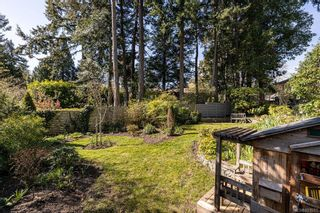 Photo 39: 2404 Alpine Cres in Saanich: SE Arbutus House for sale (Saanich East)  : MLS®# 837683