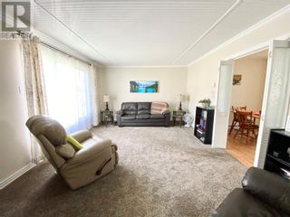 Photo 27: 33 second Avenue in Lewisporte: House for sale : MLS®# 1235599