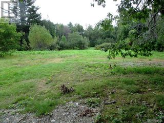 Photo 5: 198 Pleasant Street in St. Stephen: Vacant Land for sale : MLS®# NB062836